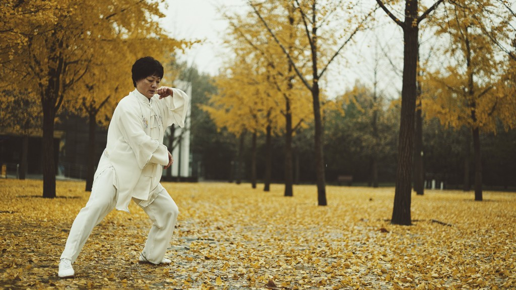 Lu Yan Wushu Portrait